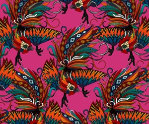 background, rooster, and bird image