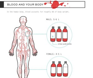 blood, bloody, and interesting image