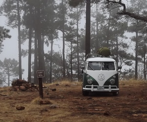 camp, forest, and hipster image