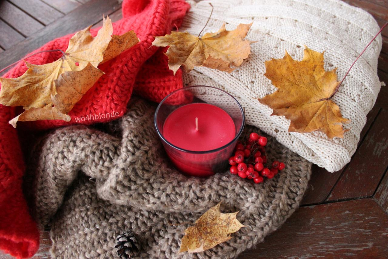 картинки осень теплый плед надежде обрести любящих