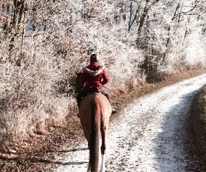 Cowgirl, equestrian, and frosty image