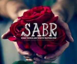 sabr image