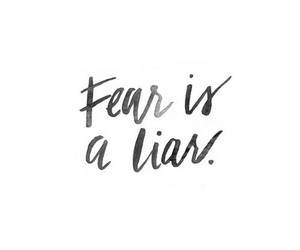 fear, quote, and liar image