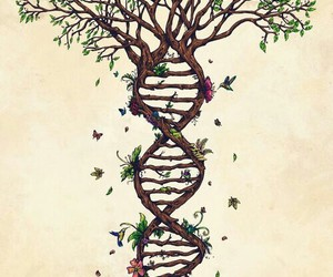 tree, DNA, and nature image