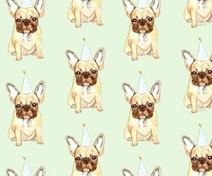 dog, mops, and wallpapper image