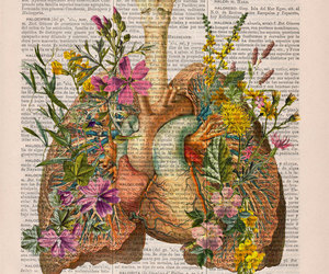 flowers and lungs image