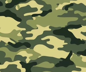 art, camouflage, and design image