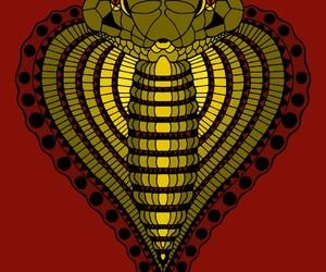 animal, cobra, and serpiente image