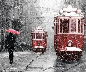 black and white, winter, and red image