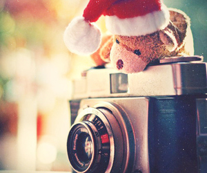 camera, christmas, and bear image
