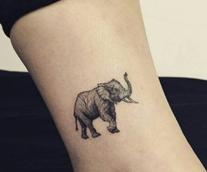 elephant, ink, and little tattoo image