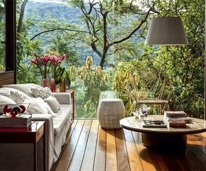 nature, interior, and design image