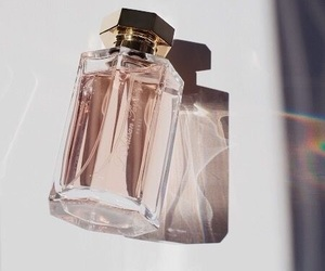 aesthetic and perfume image