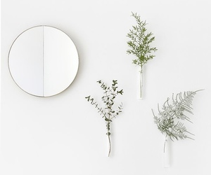 minimal, mirror, and plants image