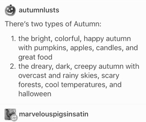 autumn, Halloween, and pumpkins image