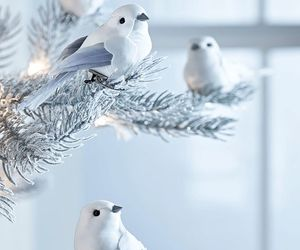 bird, cute, and christmas image