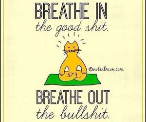 breathe, cat, and funny image