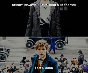 fantastic beasts, newt scamander, and tina goldstein image