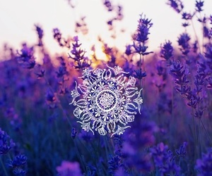 flowers, free, and be free image