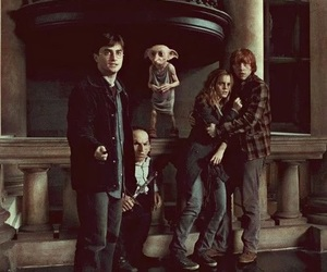 harry potter, dobby, and hermione granger image