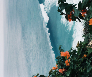 background, flowers, and ocean image