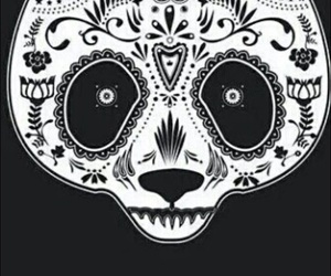 panda, wallpaper, and black and white image
