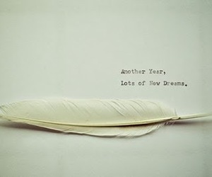 Dream, feather, and new year image