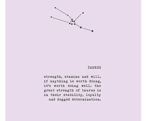 astrology, constellation, and signs image