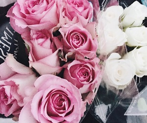 flowers, girly, and roses image