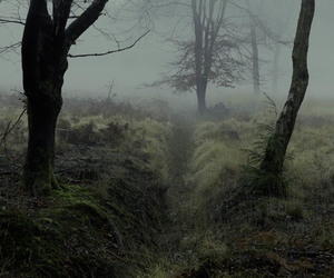 dark, night, and mystic image