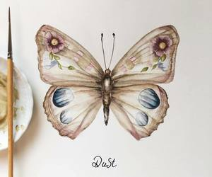 art, butterfly, and animal image
