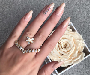 nails, rose, and beauty image