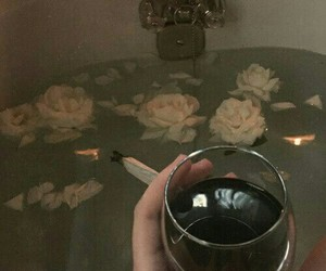 wine and roses image