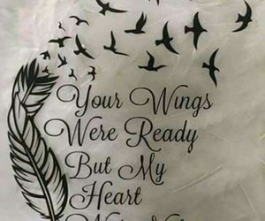 wings, heart, and bird image