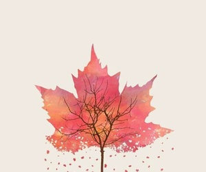 wallpaper and autumn image