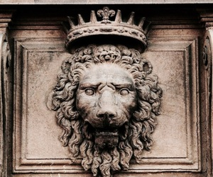 lion, crown, and king image