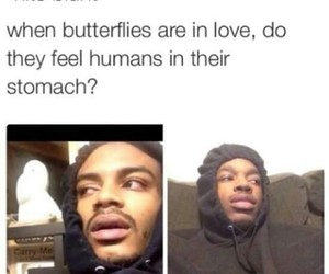 butterflies, stomach, and hits blunt image