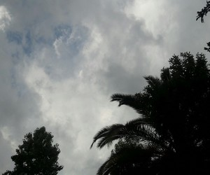 chile, grey day, and nubes image