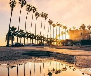 california, palm trees, and sunset image