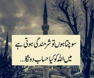 poetry, quote, and urdu image