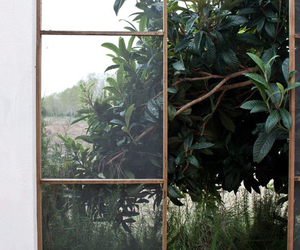 plants, green, and window image