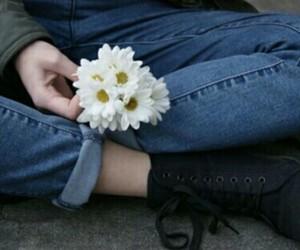 alternative, indie, and daisies image