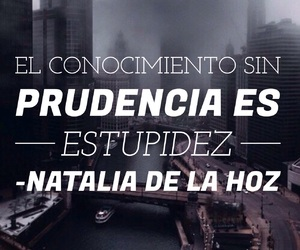 frases, conocimiento, and estupidez image
