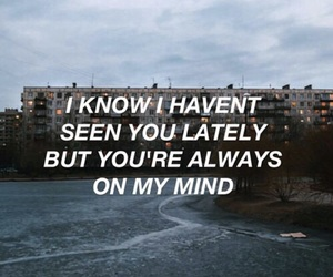 quotes, aesthetic, and grunge image
