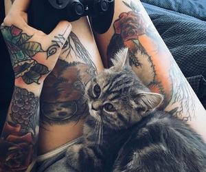 animal, tattoo, and cat image