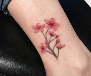 ankle, cherry blossom, and minimal image