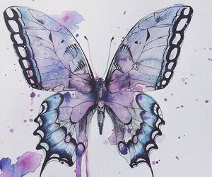butterfly, art, and draw image