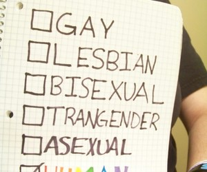 asexual, bisexual, and gay image