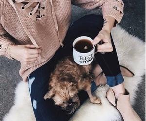 dog, fashion, and coffee image