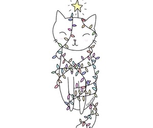 cat, black, and stars image